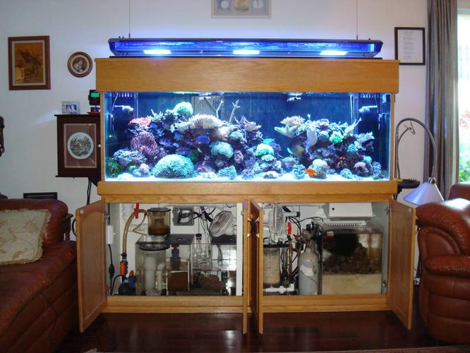135g Aquarium with Custom Oak Stand and Canopy