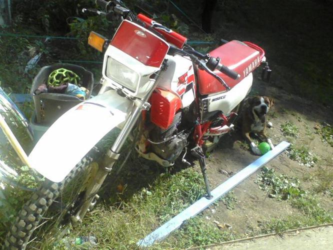 1986 Yamaha XT Enduro