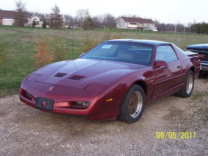 1991 pontiac trans am wife reduced the price for sale in. Black Bedroom Furniture Sets. Home Design Ideas