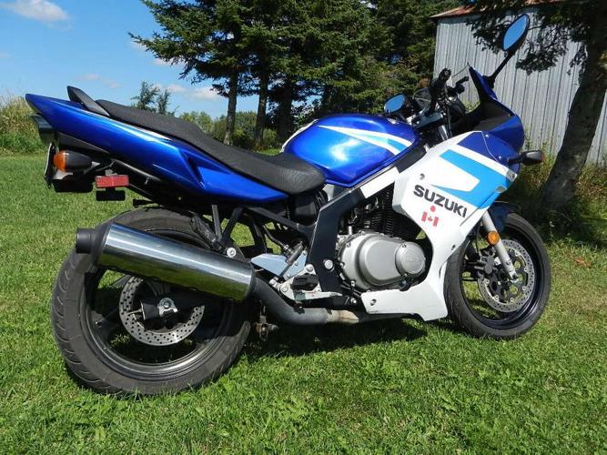 2005 GS500F NICE BIKE says she wants a 250 ninja