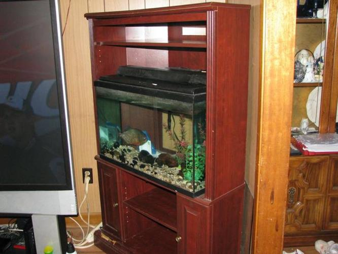 30 gallon fish tank for sale in cornwall ontario ads in for 30 gallon fish tank