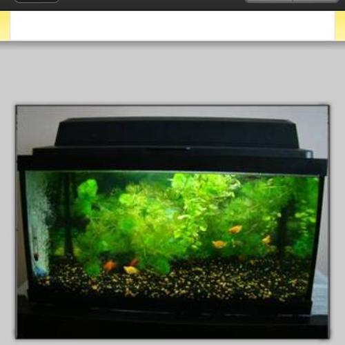 45 50g Fish Tank Light Canopy Gravel For