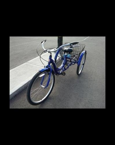 Adult Tricycle (perfect condition)