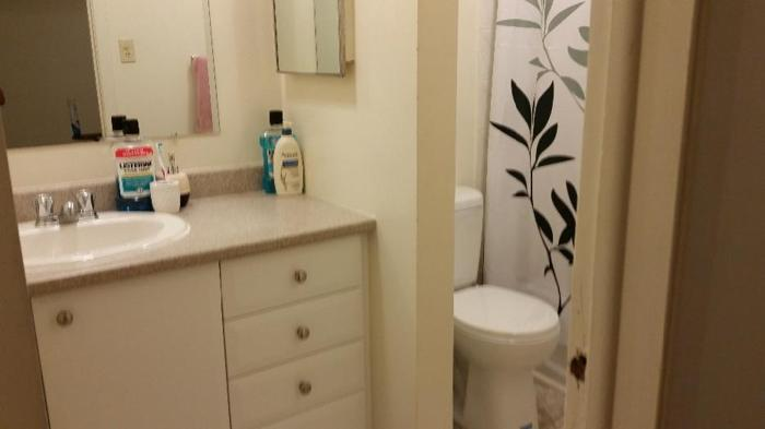 All inclusive large room for rent in Nepean townhouse