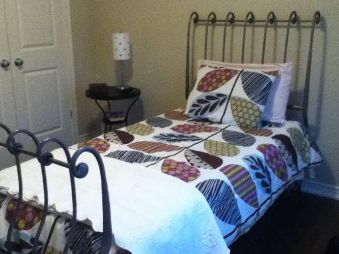 Beautiful Twin Size Iron Bed From Pier 1 Imports For Sale