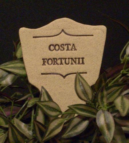 COSTA FORTUNII - Humor in the Garden MARKER decor