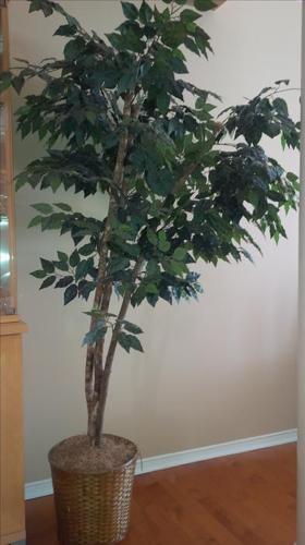 Decorative Artificial Indoor Tree 7' tall