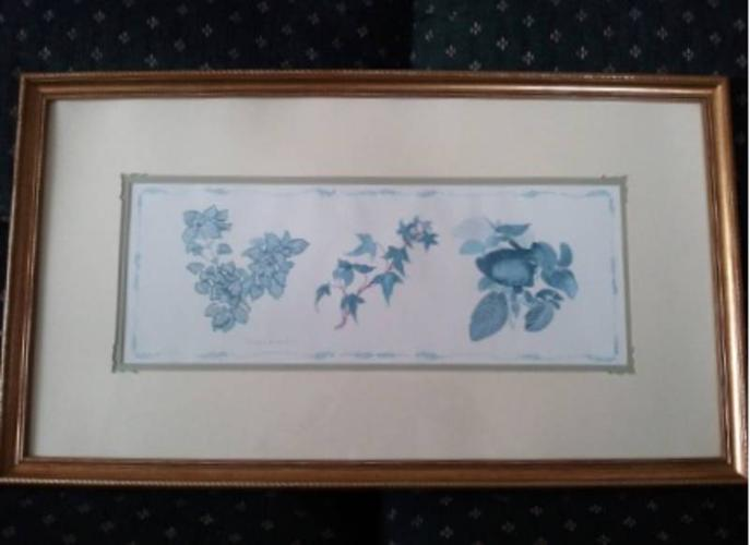 Ferns With Ivy Print by Carolyn Cappello