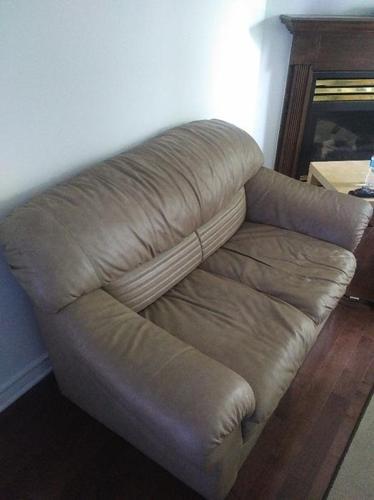 Ginuwine Leather Love Seat