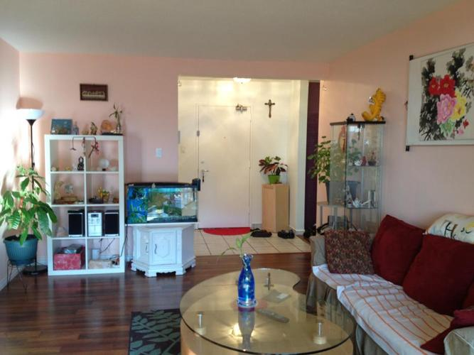 RENOVATION And MOVING SALE (Everything have to go)