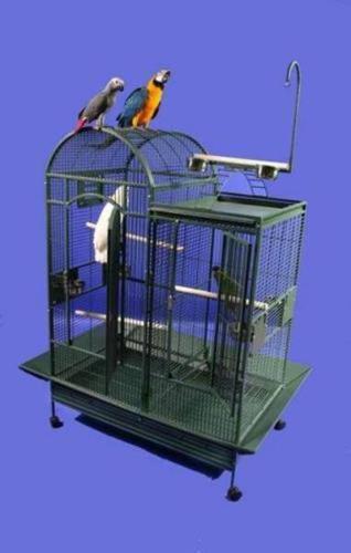 Taking in unwanted birds