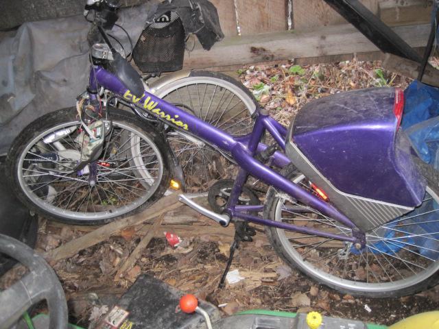Warrior Electric Bike
