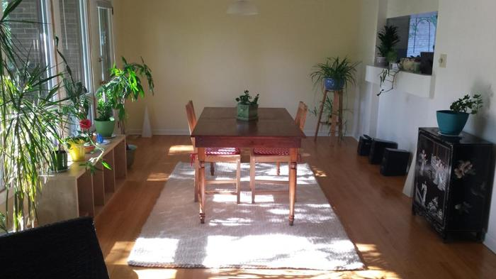 West end - 1 room for rent in gorgeous house and neighborhood