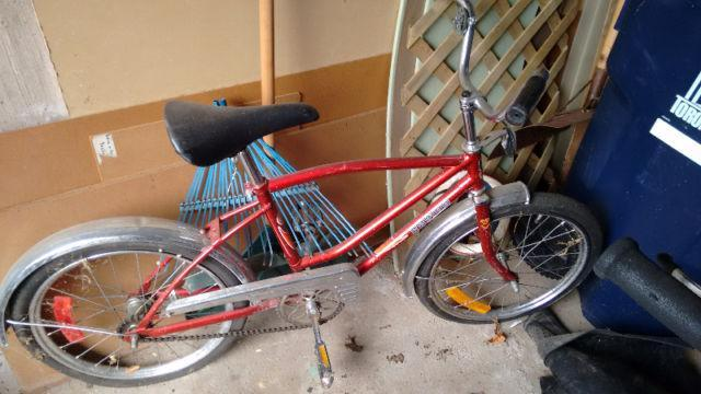 Young Teens Bike