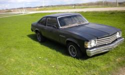1976 Buick Skylark Runs fine. Tinted windows. 320. CD player. Perfect project car. New brakes, fuel lines, tires, tonnes of work put into it. 7500 OBO
