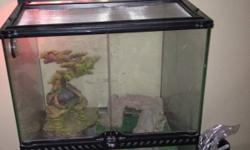 2 healthy geckos in a cool glass cabinet style tank with all the parts you need and an extra bag of sand. Includes a heating light, water dish, decorative plants, and hiding areas for them. They can eat crickets and mealworms. This ad was posted with the