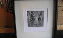 3 black and white photos signed in Double mat Frames . All are 20 x 20 inches and in 2 inch frames. The firsts is Grass in a pond, the second is a tree line road with a mist rolling in. The tird is the same but a different view. Price is $30. each