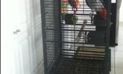 ** Selling a 5 Year Old African Grey Parrot ** - Talks/makes sounds -Very intelligent -Can feed itself -CAGE AND TOYS INCLUDED ** PLEASE only contact if you are serious about buying and taking care of our parrot!! ** ---- We are willing to sell for $1200,