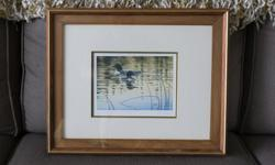 Framed Loon Print, excellent condition.