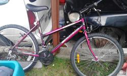 18 speed older but in good shape unisex mountain bike . could use tune up . not much use