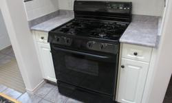 Magic Chef gas range, black w/ matching range hood
