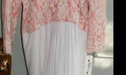 This gorgeous dress features elegant lace overlay on dusty rose with a drop waist. The skirt has ample material and wraps slightly around your body and is gathered at the back which offers a very forgiving silhouette. This dress would be perfect for a