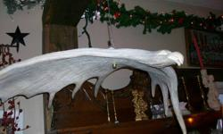 Date Listed 07-Nov-11 Price Free Address 16 Main St W, Huntsville, ON P1H 2C6, Canada View map Come see our wide selection of collectables, vintage items, jewelry, candles, used books and crafts at 16 Main Street West, Huntsville, Ontario (705) 789-6977