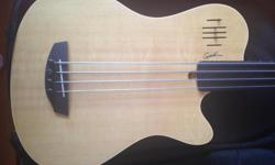 Fretless bass for sale! I love it but I don't really play it much anymore, need to make room for new purchases. It has some minor damage from an inconsiderate roommate, a minor ding on the front and a chip off the paint on the back (shown in pictures