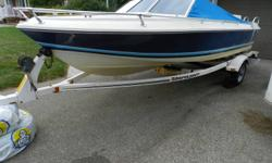 I have a early 1990s Doral 90HP powerboat. This is a great starter boat for a young family. Uses minimal gas, and has enough power for wakeboarding, waterskiing and tubing. Comes with two batteries, as well as a tube that I only used once this year. The