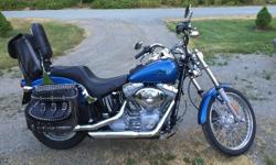 2005 Standard Softail. Mint condition, 3500 kms, 88 cubic inch, custom pipes, custom leather bags, windshield and more. Purchased new from Steve Drain but wife doesn't want to ride on the back anymore so it's time to go. This was my retirement present to