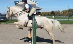 Hi, my name is Bria. I am 13 years old and an experienced rider. I love horses and I am very passionate about them! I have ridden for almost 7 years and I love all disciplines. I would rather lease an english horse that I could jump and show during the