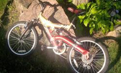 Infinity Kids Bike Size 20 Asking: $25