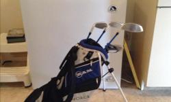 Like brand new. Golf clubs and bag. Call 306-924-4790 or email joajar@sasktel.net