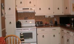 Kitchen Cabinets for sale in good condition.