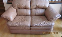 Standard size genuine leather tan coloured love seat and couch for sale. Lightly used in excellent condition in a smoke free home. $800.00 for the love seat and couch as a set or $400.00 each.