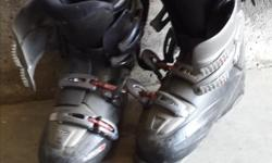 Mens size 8 Tecnica Ski boots Pick up in Balgonie, but could make arrangements to meet in East Regina