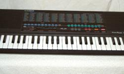 Casio Keyboard with many voices and settings ...mini keys ideal for child...has midi inputs...works fine..