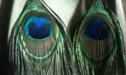 Peacock feathers are all the rage this year! These pretty peacock feather earrings would be a great addition to any gift, as a stocking stuffer, or even for yourself! Features two tone bead detail, beautiful peacock feathers, and fish hook posts with