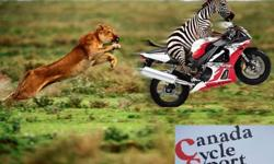 Canada Cycle Sport  ? Toront's Best Professional Motorcycle Atv  Mechanics  20 Trusted Years in Business  ? For all your Motorcyclce & ATVs & Outboard,Lawnmower, & repair Service needs. Professional Service,Low Hourly Workshop rates.  All Motorcycles