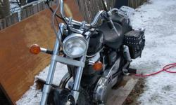 2002 Suzuki Savage  650  just bought bike never even drove it.Could not get affordable insurance.Bike is mint has saddle bags.Belt drive came with mechanical.All other owners were woman.3000.00 firm.comes with cover as well