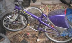 Warrior Electric bike. Needs repairs (TLC) and a battery. All offers will be considered.