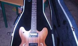 Washburn Semi-Hollow body Electric Guitar, new condition would make a great Christmas gift..... comes with a molded hard case..